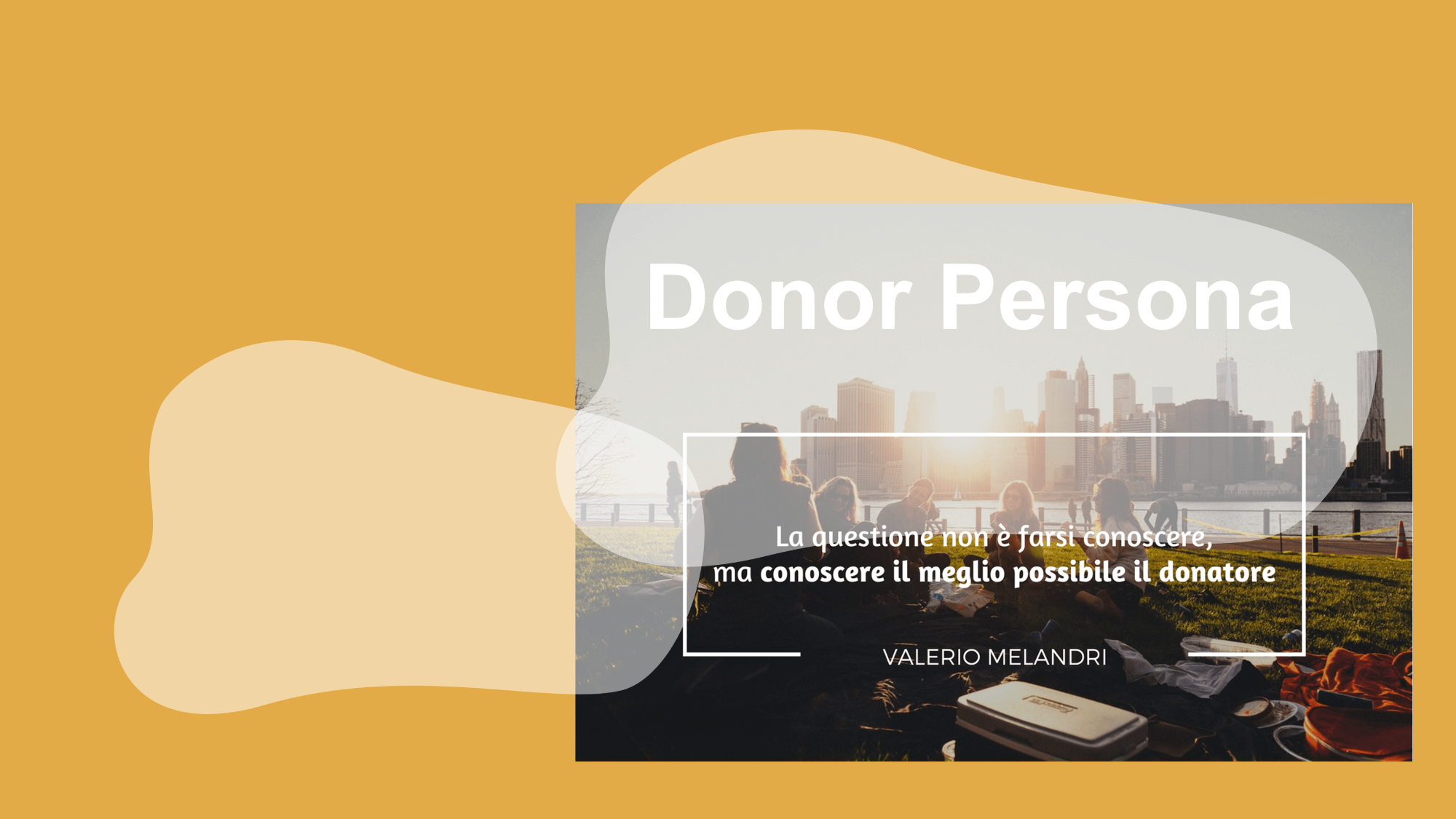Donor Persona